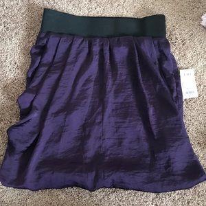 Dark Purple Charlotte Russe Skirt